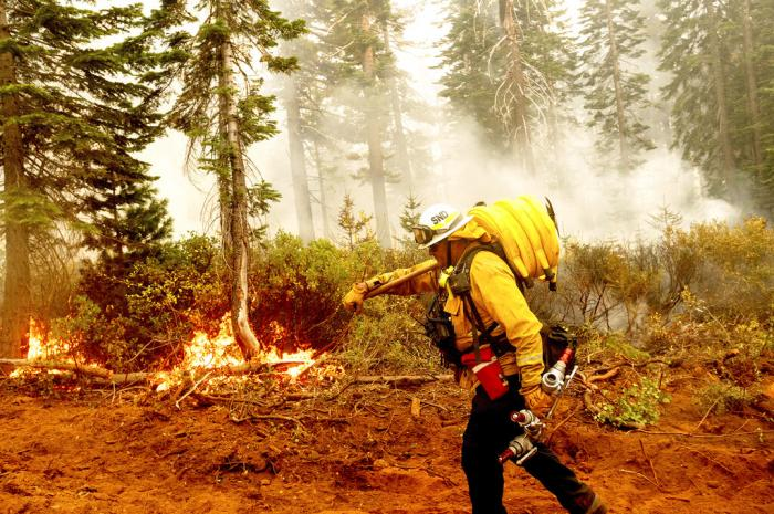 Cal Fire Battalion Chief Craig Newell carries hose while battling the North Complex Fire in Plumas National Forest, Calif.